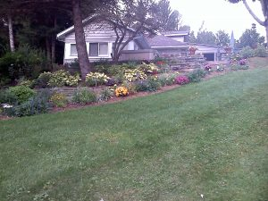 Curb appeal Gardens and Landscaping