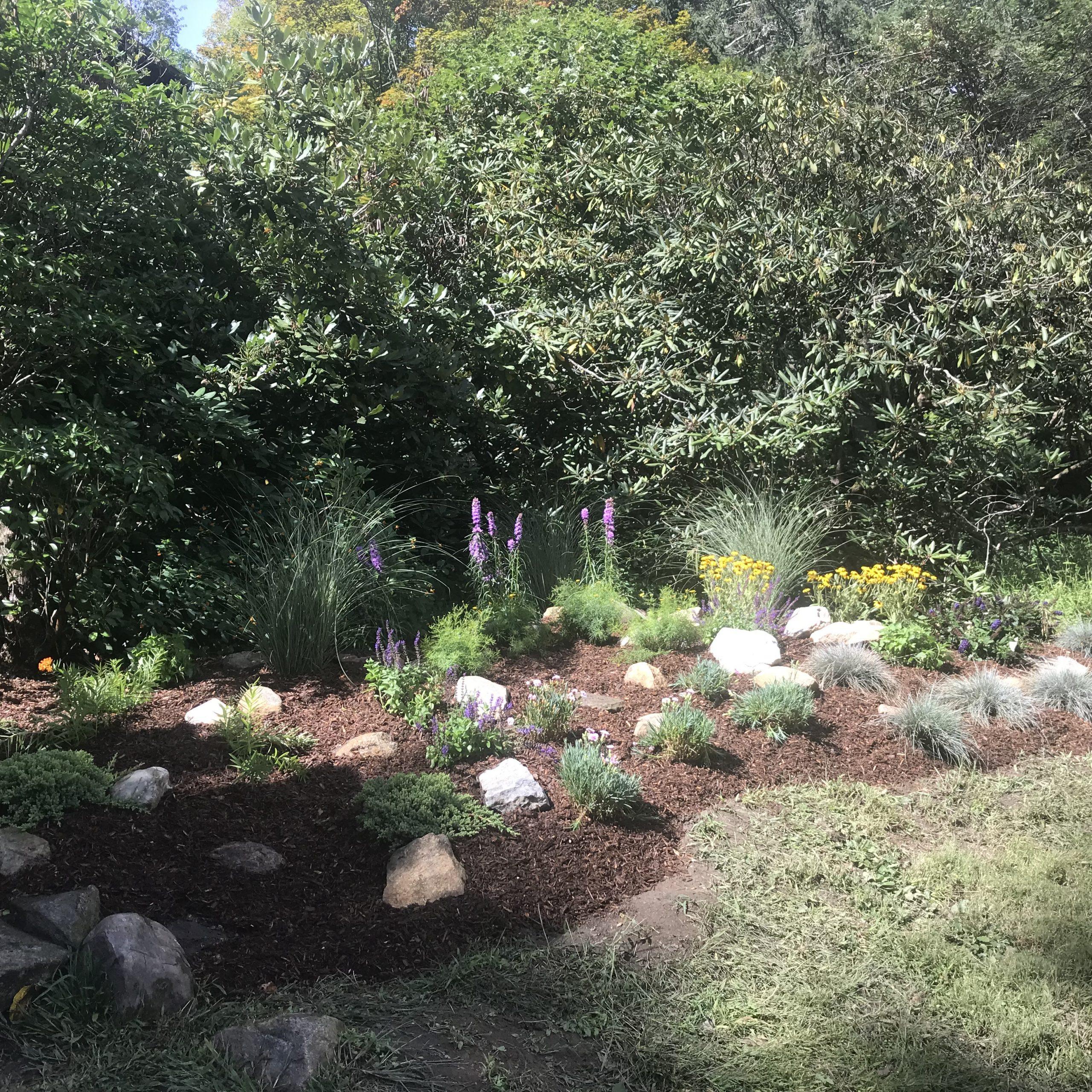 Perennial & Grass Garden