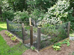 Dutchess-County-Vegetable-Garden