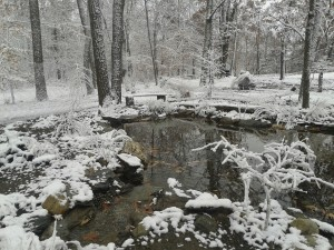 Step-6-winterize-pond
