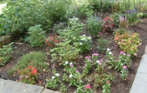 landscape-companies-columbia-couty-ny